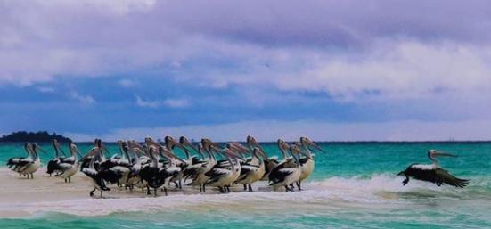 Pantai Ngur Tavur, Wisata Maluku